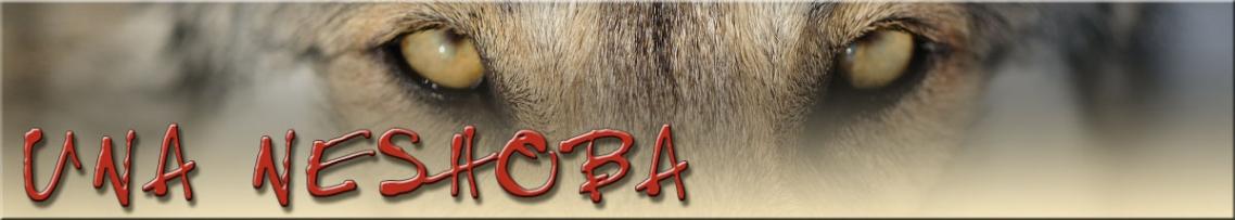 Saarlooswolfhond Kennel Una Neshoba